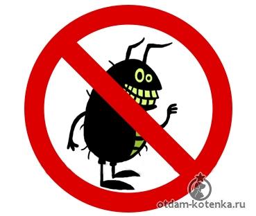 лечение тыквенными семечками от паразитов отзывы